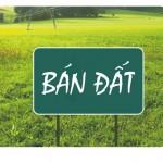 Ban dat Thao Dien