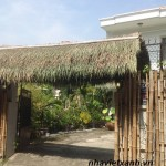 Bán nhà đất Thảo Điền Quận 2, Bán nhà Quận 2, Bán đất Thảo Điền, Bán Villa Thảo Điền, Bán đất Thảo Điền