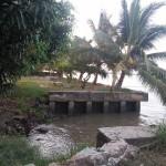 Bán đất mặt sông Saigon phường Long Phước Quận 9
