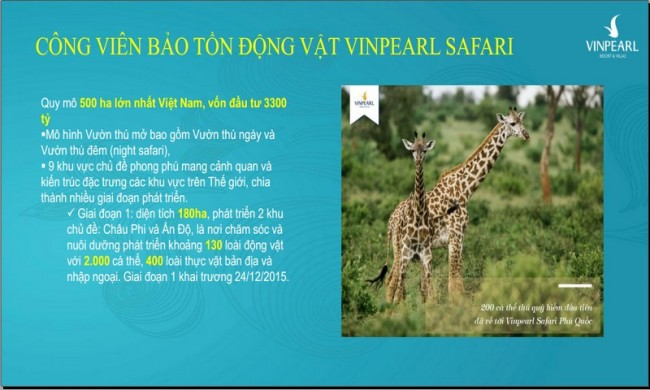 khu-bao-ton-dong-vat-vinpearl-saferi