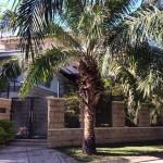 Biệt thự cho thuê đẹp nhất Thảo Điền Quận 2